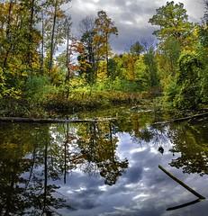 Concord Woods_20181030_16