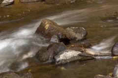 Cunningham Falls State Park 30 Oct 2018  (29)