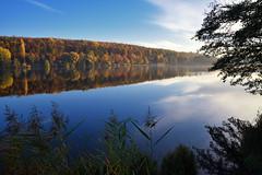 Couleurs d'automne sur le Plan d'eau de Wolfartshoffen - Photo of Zinswiller