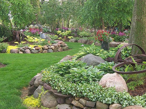 Flowers And Garden Ideas : Hosta rock garden