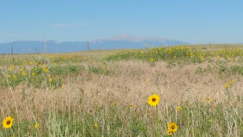 chfstew colorado coelpasocounty nationalregisterofhistoricplaces nrhp66er nrhpwest nationalhistoriclandmark landscape