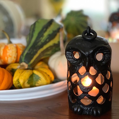 who who who's ready for Halloween #owl #decorativegourds #halloween