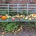 Mellow Fruitfulness
