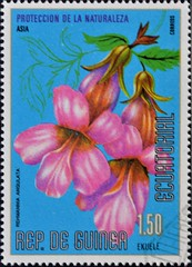 Equatorial Guinea (14) 1979 Nature Preservation - Flowers