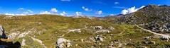 Le plateau du Cuscione en automne-011