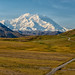Celebrating Alaska ... Denali-Style