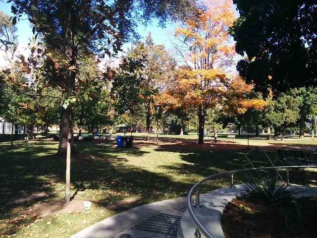 In Dufferin Grove Park (11) #toronto #dufferingrove #dufferingrovepark #parks #fall #autumn #latergram