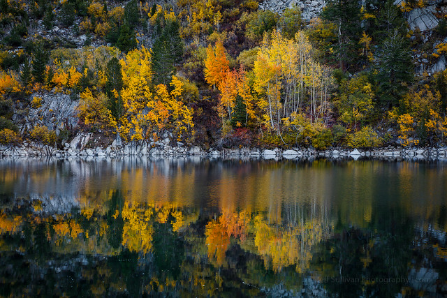 Colorful Aspen Reflection