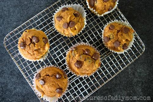 Pumpkin Muffins 5a