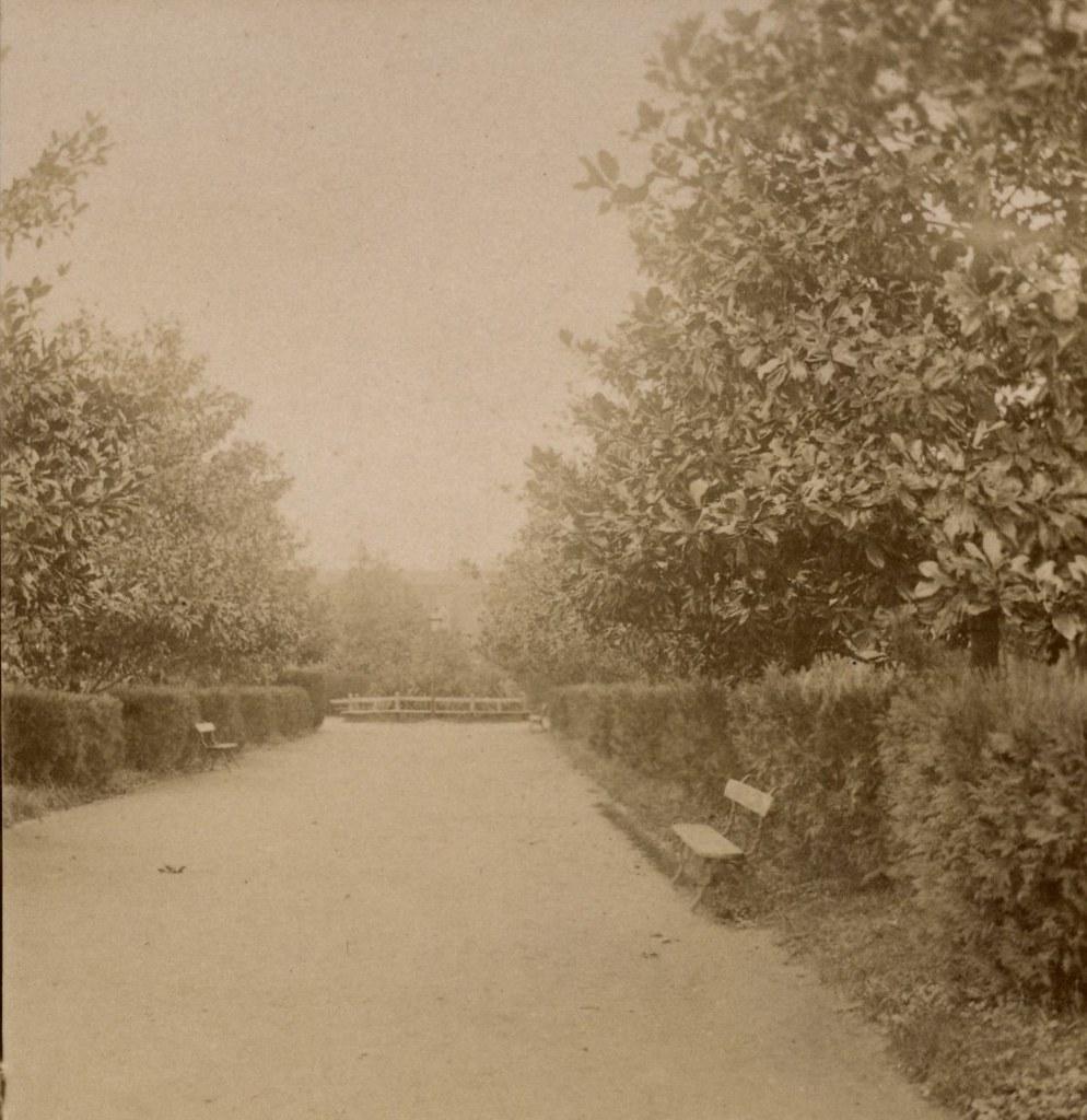 Аллея в Городском саду.