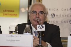 Vicente Álvarez Areces, senador