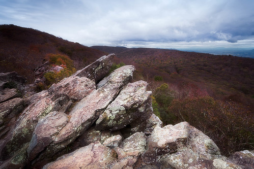 view autumn landscape nature nationalpark mountains overcast summit rocks appalachian shenandoah blueridge virginia travel greenstone trail lichens weathering scenic skylinedrive gallery:rating=5