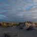 duinen bij de Horsjes