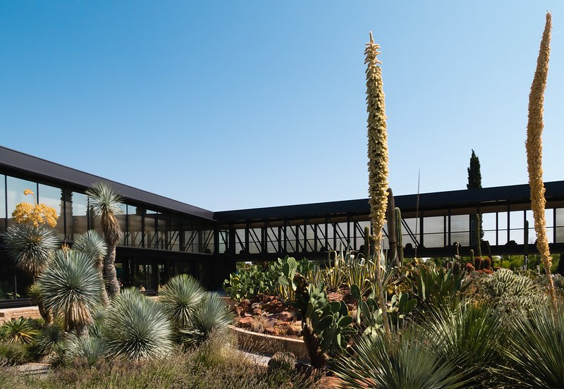 Garciagerman Arquitectos. Desert City #5