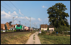 SNCF BB 37048 | Schwindratzheim - Photo of Buswiller
