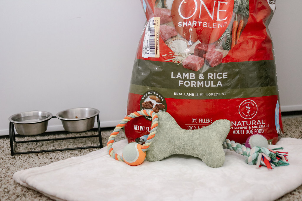 Reasons to Take the Purina One 28 Day Challenge #PurinaONEPets
