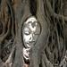 4. Buda entre las raíces de un árbol en Ayuthaya