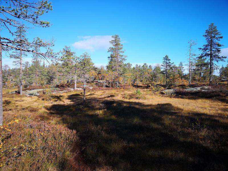 25-Fra Hovlandsfjell