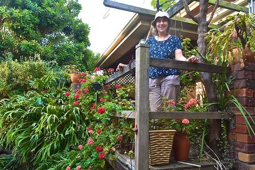 Jill Weaver amongst the geraniums on our back verandah October 2018