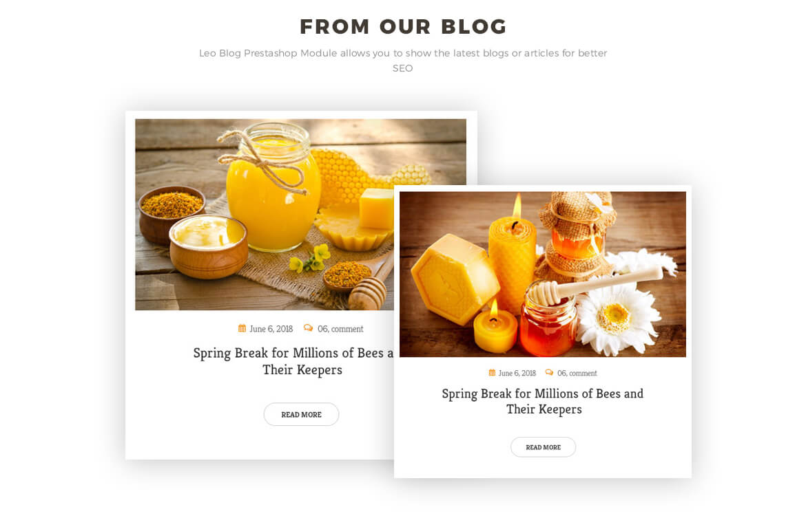 blog Prestashop module -honey store