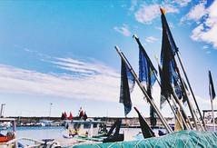 Venise du Languedoc