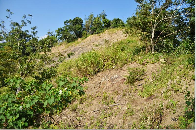 回望小林山登山步道崩塌地形