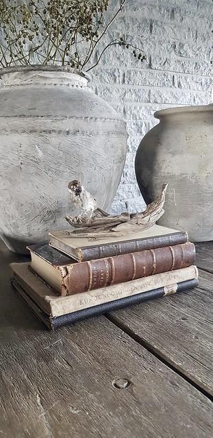 Kruiken sober stoer boeken vogeltje