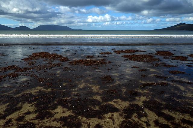 inch_beach_L1020519