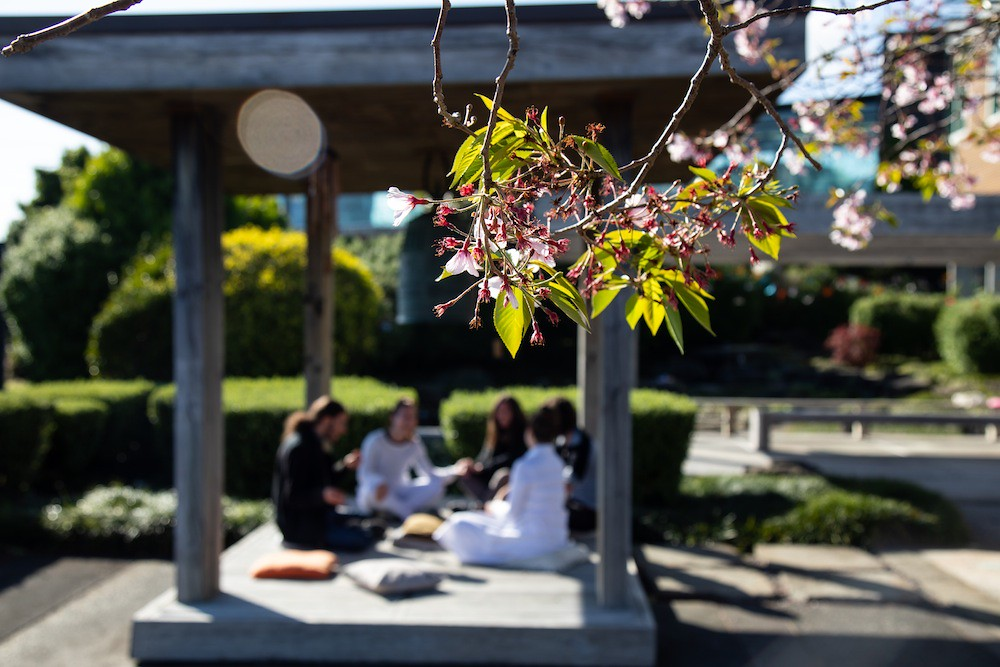 Placemaking-Ribbon-JapaneseGarden-Auckland-Henderson03