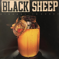 BLACK SHEEP:STROBELITE HONEY(JACKET A)