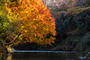 Photo:Autumn Color By t.kunikuni