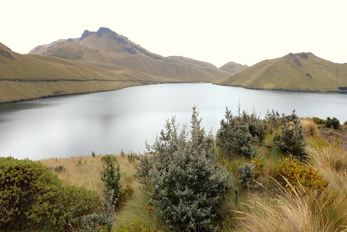 J24 : 11 octobre 2018 : Lagunas de Mojanda et ascension du Fuya Fuya (4263 m)