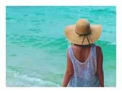 Que la vie est belle aux Seychelles 🎶🌴🐢