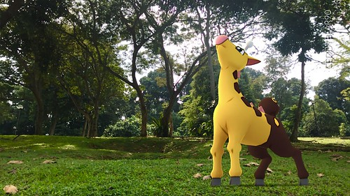 203 Girafarig (position=right)