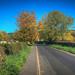 Bullocks Lane, Macclesfield with Autumn Colours