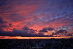 NSchweitzer_Sunset12112018