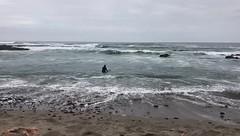 Playa Bellavista
