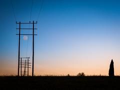 light posts..