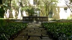 Museu Nac 170904 009 Museu Nacional UFRJ  jardim interno chafariz