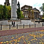 Autumn leaves in Preston