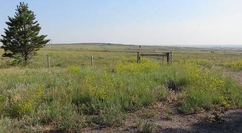Northeastern Wyoming Landscape (Weston County, Wyoming)