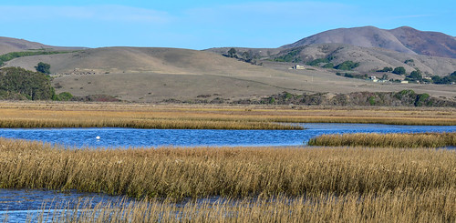Tomales Bay Ecological Reserve