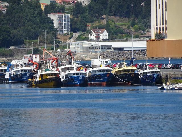 Los barcos del puerto