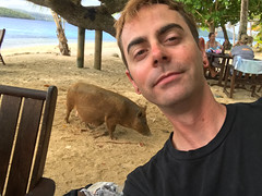 Selfie with a pig