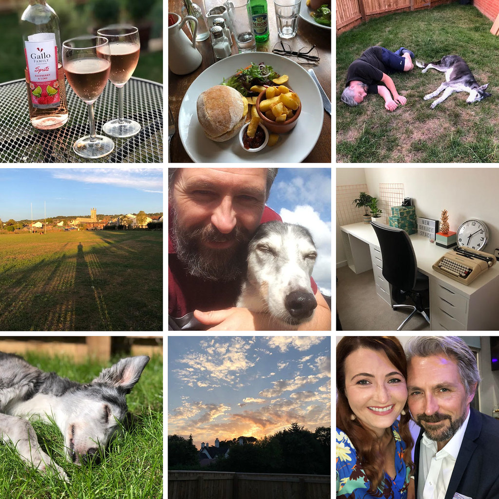 My Year in Review: 2018, the Third Quarter | Not Dressed As Lamb
