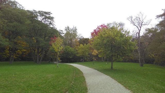 Curving path #toronto #homesmithpark #humberriver #fall #autumn #path #green  #latergram