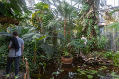 Visit to Geneva and Jardin Botanique with the kids