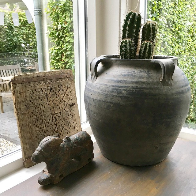 Kaktus in kruik vensterbank landelijke stijl