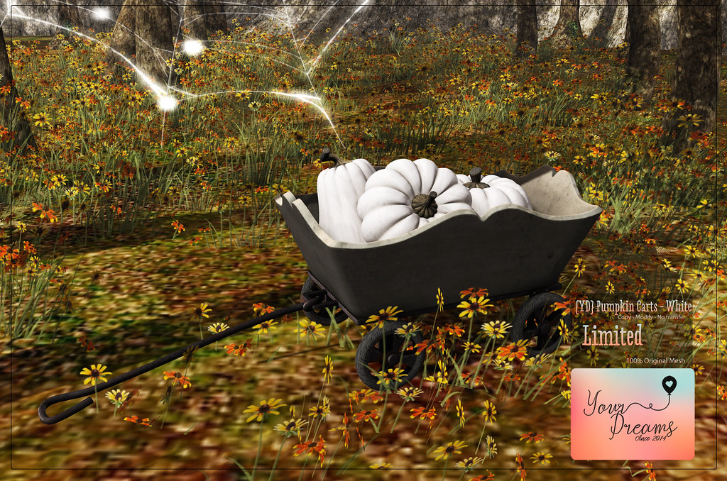 {YD}Pumpkin Carts – Limited