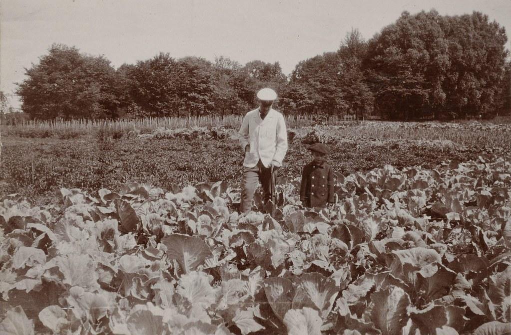 Граф Д.С. Шереметев и его сын Сергей в огороде.